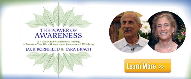 The Power of Awareness Mindfulness Training
