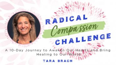Tara Brach's Radical Compassion Challenge Summit