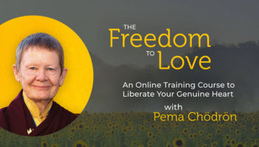 Pema Chödrön's Freedom to Love Online Course