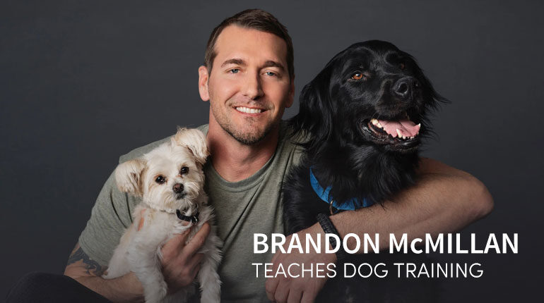 Brandon McMillan's Dog Training Online Course