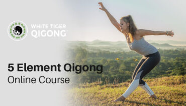The Comprehensive 5 Element Qigong Online Course