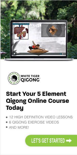 The Comprehensive 5 Element Qigong Online Course