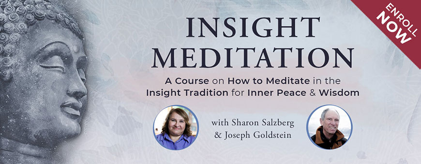 Insight Meditation Online Course
