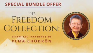 Pema Chodron's Freedom Collection Online Course